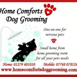 Home comforts dog groominweb